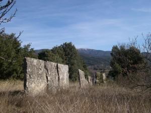Clôture en dalle dressée sur le terroir taulignanais