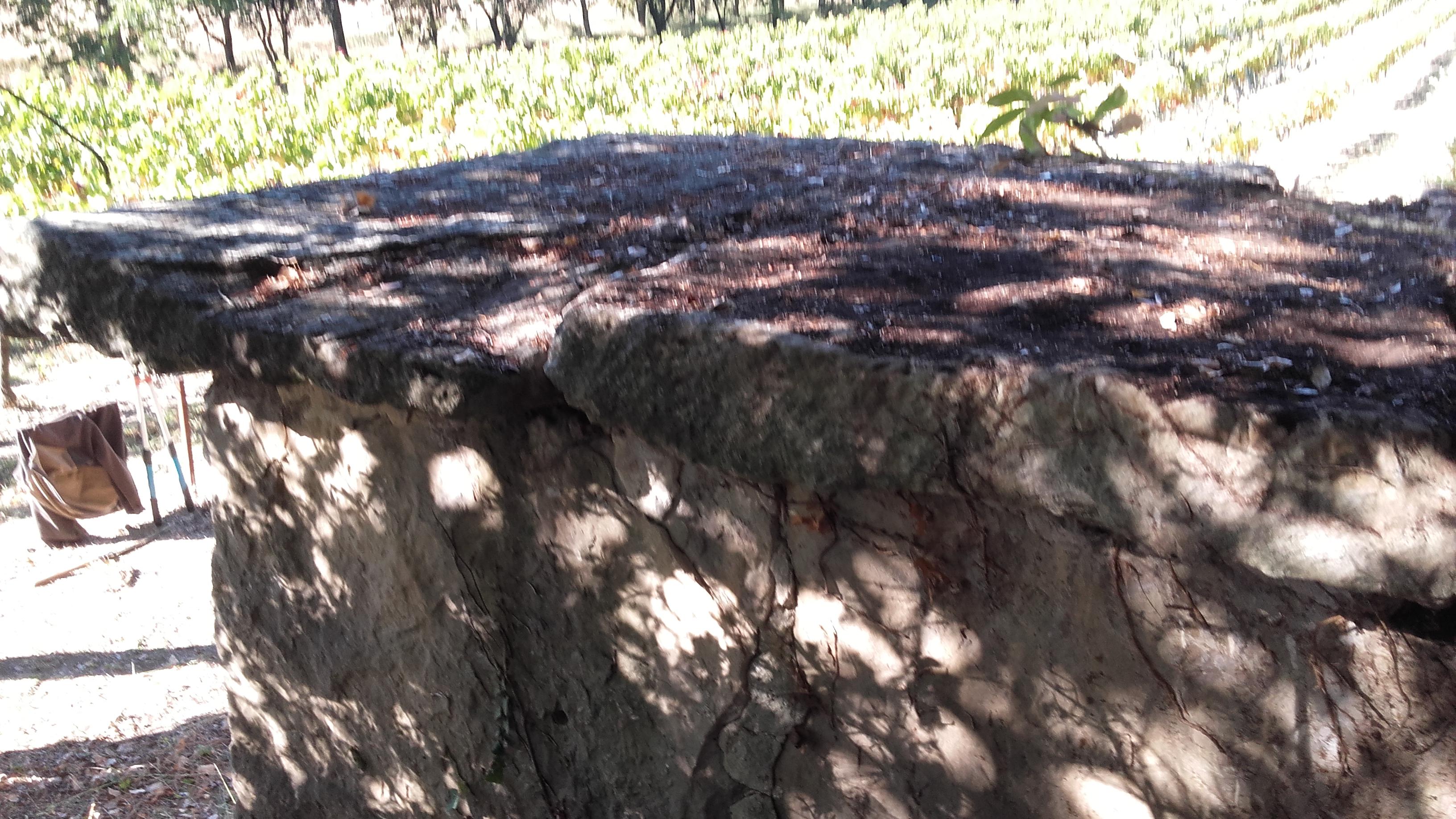 Toit du cabanon en dalles de pierre