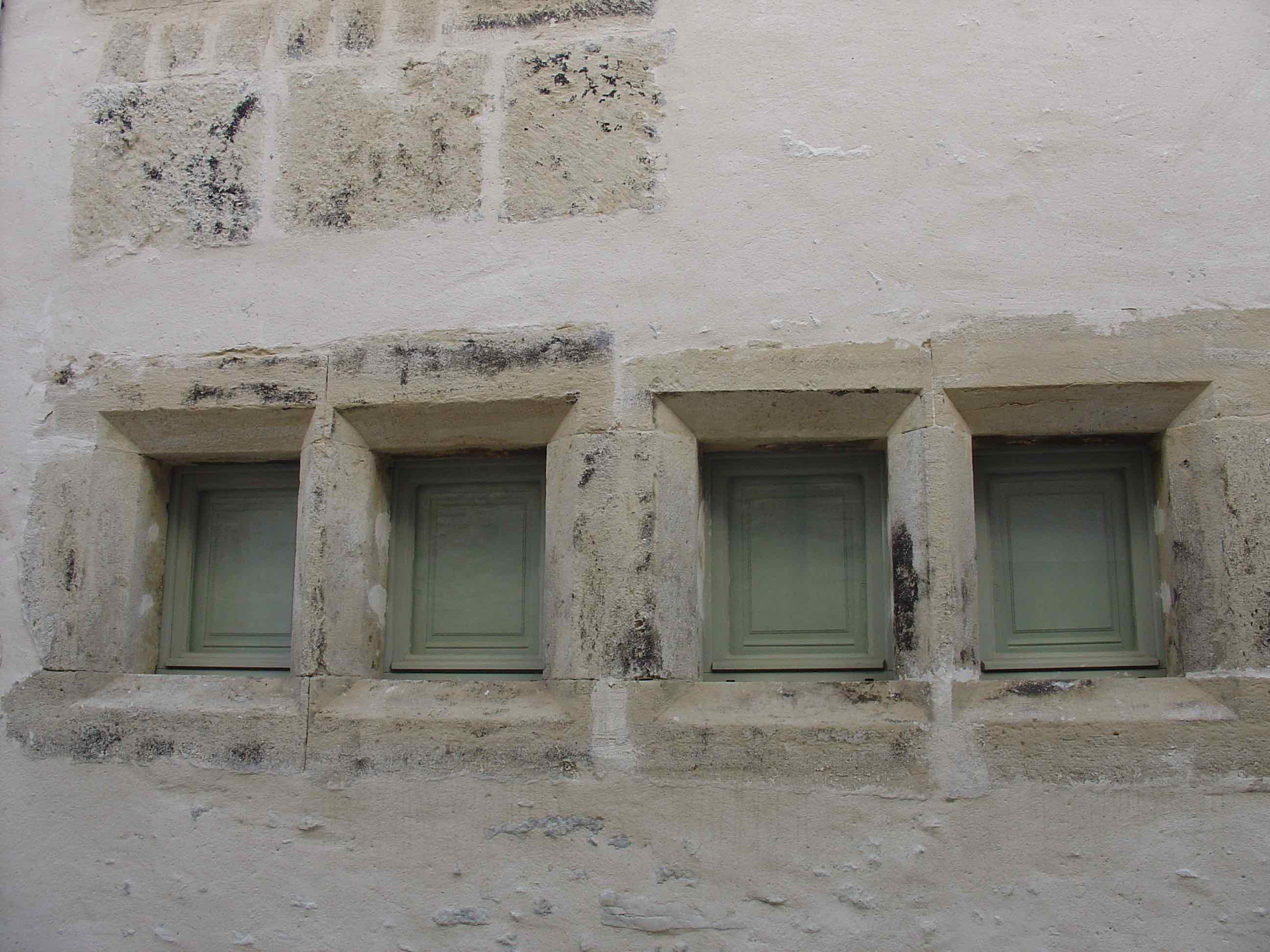 Maison noble fenêtres RdC